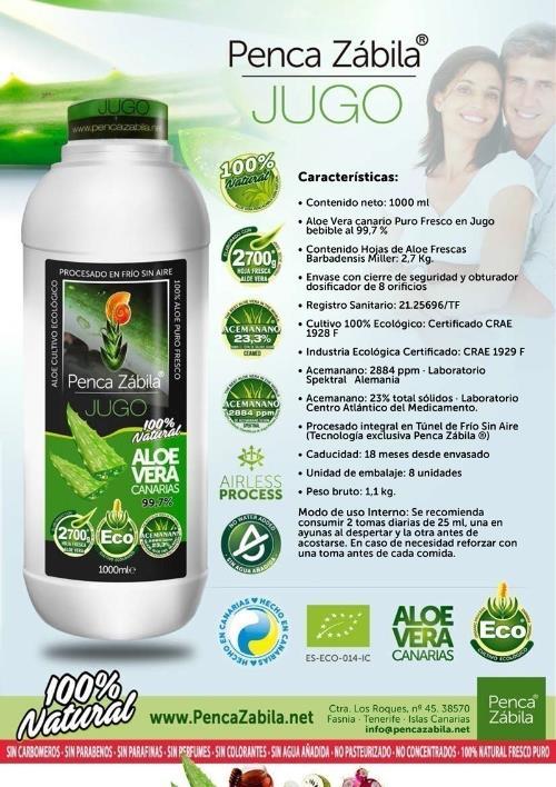 aloe vera juice fresh natural pure Penca Zabila