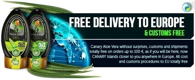Aloe Vera Penca Zabila Free Delivery