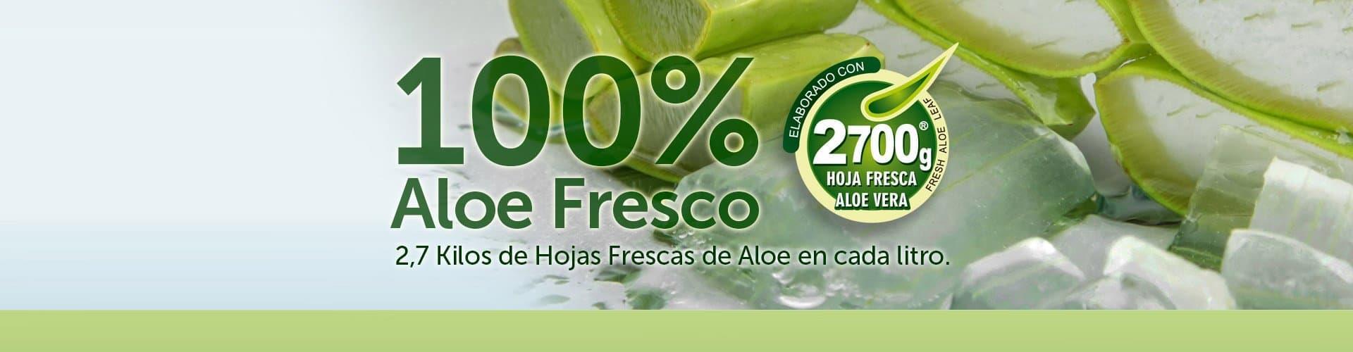 Aloe Vera Penca Zabila Natural