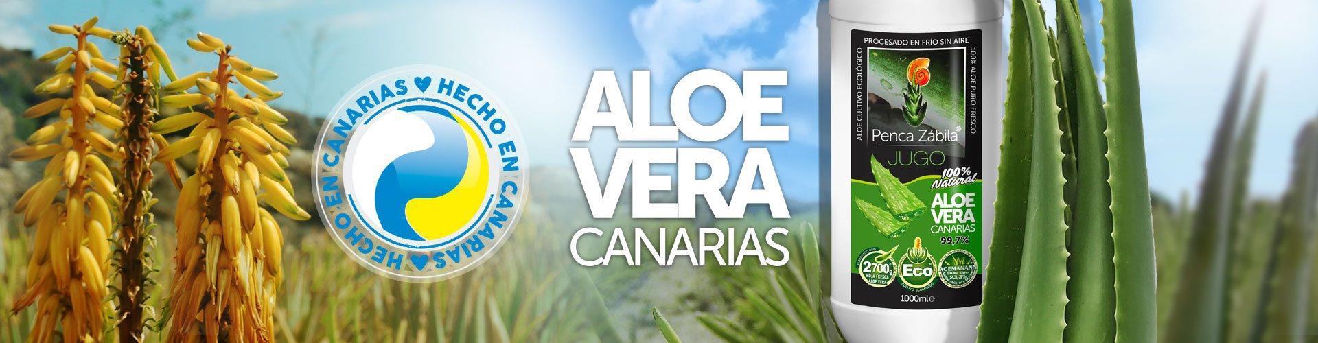 Jugo Aloe Vera de Canarias Penca Zabila