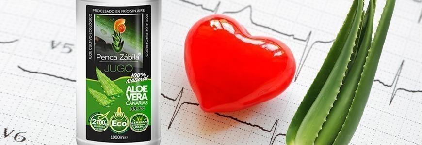 Aloe contra el Colesterol