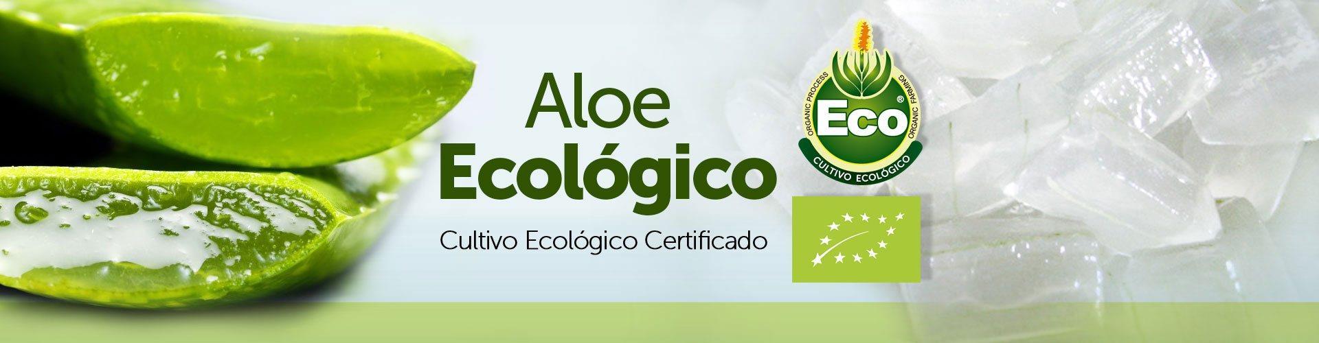 Aloe Vera Ecologico Puro