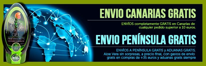 Aloe-Penca-Zabila-Envio-Gratis