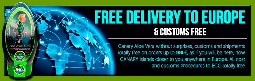 Aloe-Vera-Penca-Zabila-Free-Delivery