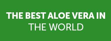 Penca Zabila Mejor Aloe Mundo
