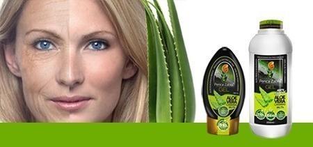 Beneficios Gel Aloe Vera Canarias Penca Zabila