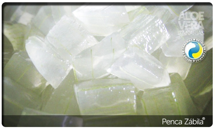 Aloe Pure Gel Fresh