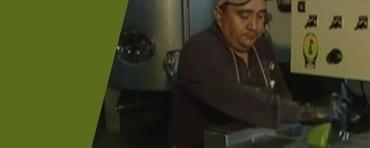 Aloe Vera Processes Factory