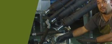 Aloe Vera Processing Penca Zabila