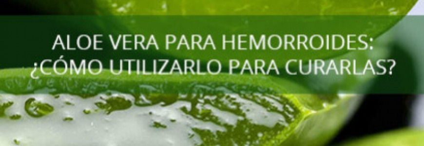 Aloe vera for hemorrhoids: How to use it to cure them?